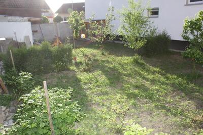 Garten: Der Anfang
