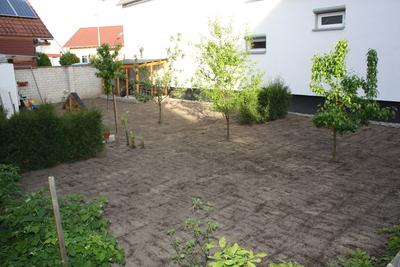 Garten: Aussaat Rasen